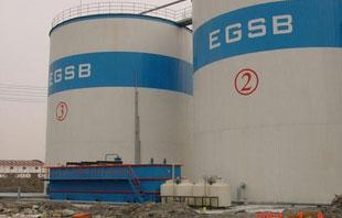厌氧反应器-EGSB