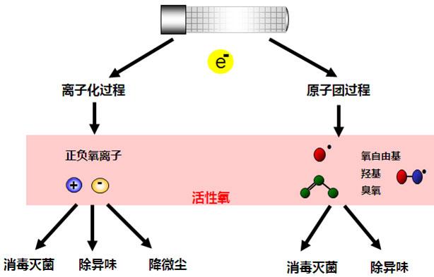 活性离子除臭设备